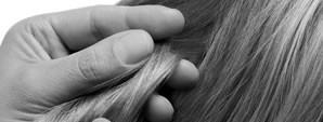 A fisiopatologia e os avanços na pesquisa das diversas doenças do couro cabeludo e dos cabelos é o tema central deste módulo. A parte prática será sobre a histopatologia das […]